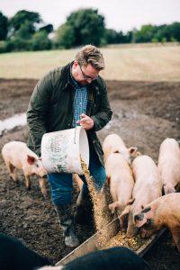 Free Range Pig Farm Corndale Farm