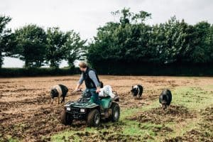 Quad on the Farm - Corndale Farm